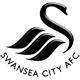 2012/13英超联赛大阅兵:斯旺西 Swansea City