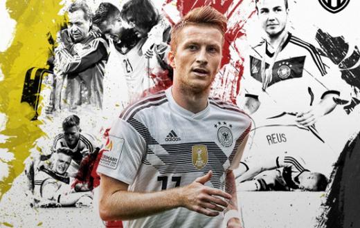 29岁罗伊斯终踢世界杯!但世界第.